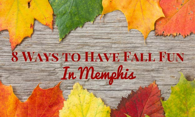 Have Fall Fun In Memphis